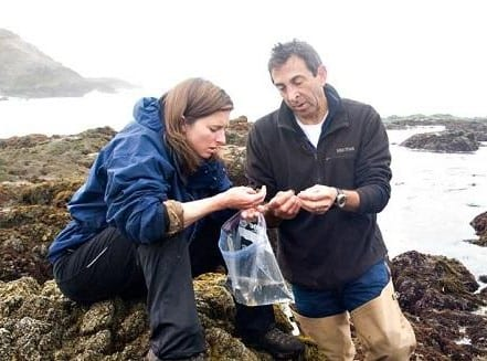 Prof Grosberg and another scientist examine specimin at the water's edge