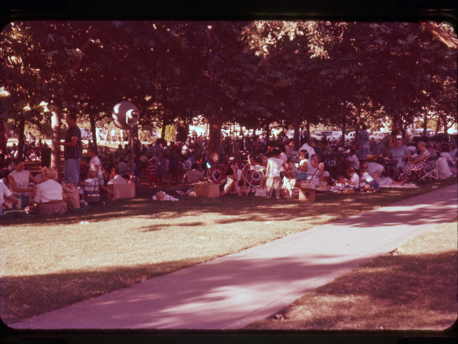 Davis Fourth of July Parade and Picnic, July 4, 1958