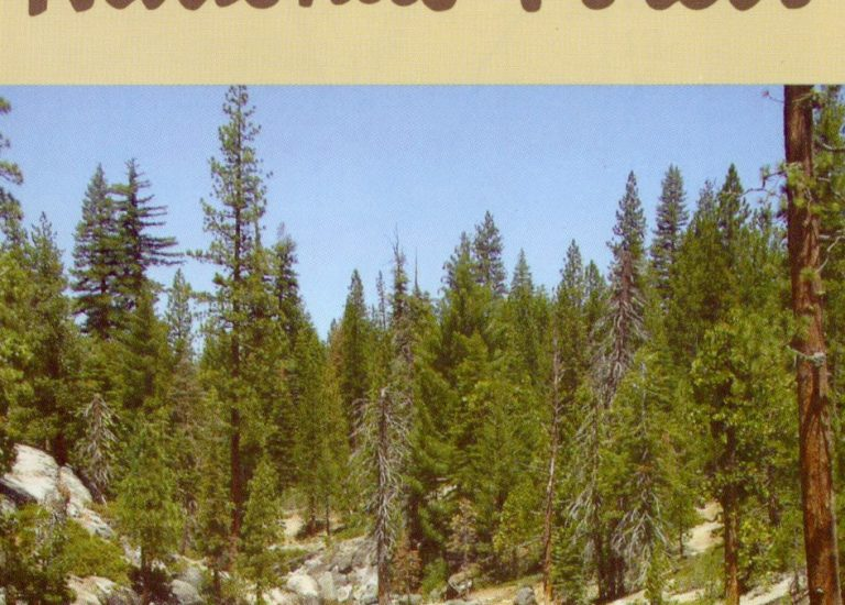 Featured Maps! National Forests in California Thumbnail