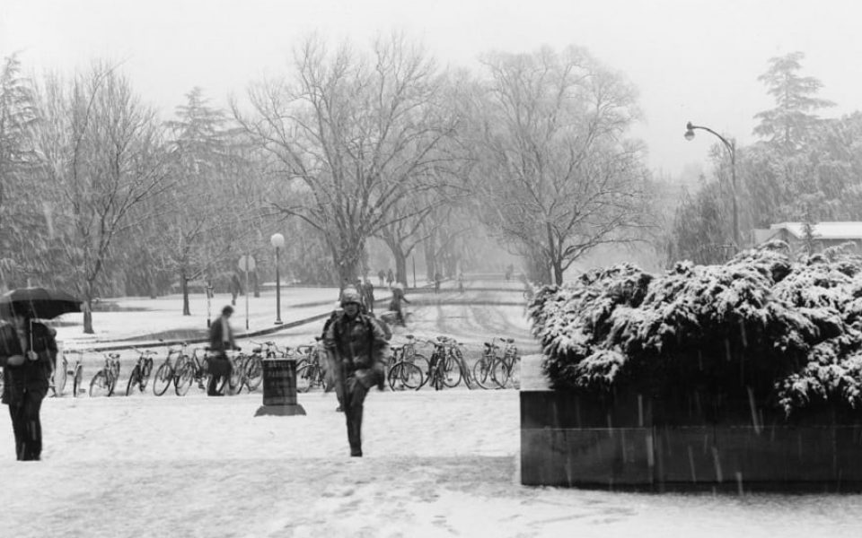 Snow on campus, January 8, 1973 (University Archives/Archives and Special Collections)