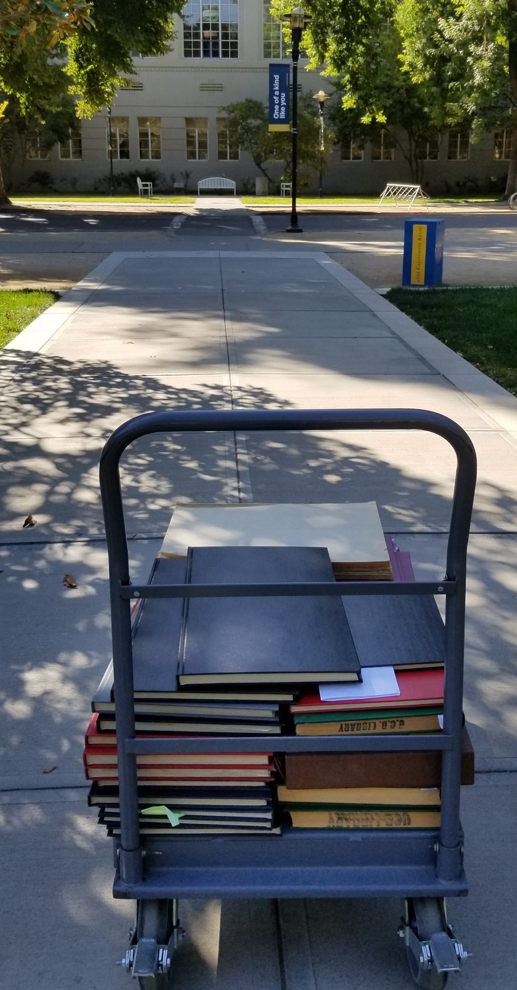 Book cart with bound copies of The Aggie on path with Shields Library in the background