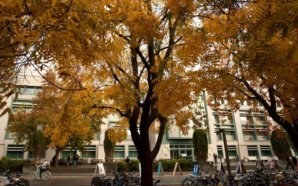 Students walk to Shields Library as trees outside the library turn to fall colors. (Gregory Urquiaga/UC Davis)